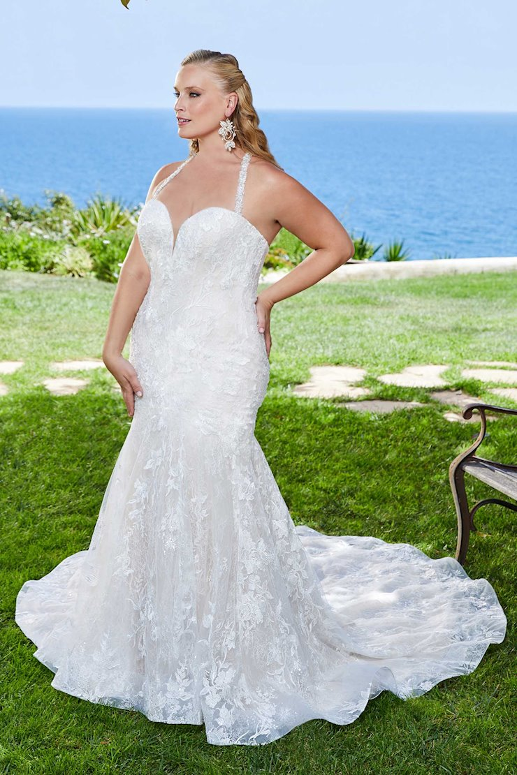 Curvy Collection Style #2399C Image