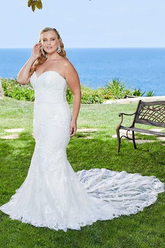Curvy Collection Style NO. 2404C
