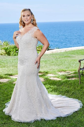 Curvy Collection Style #2410C