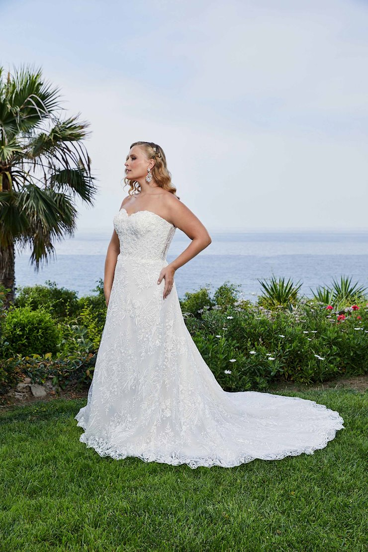 Curvy Collection Style 2414C  Image