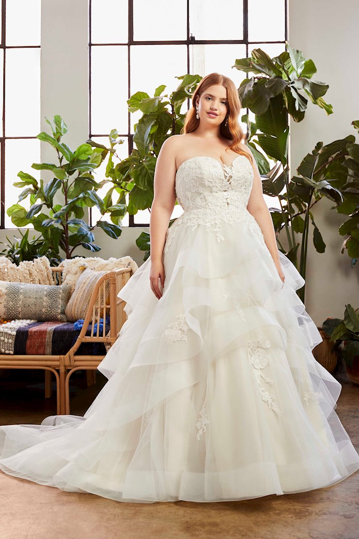 Curvy Collection Style NO. BL323C  Image