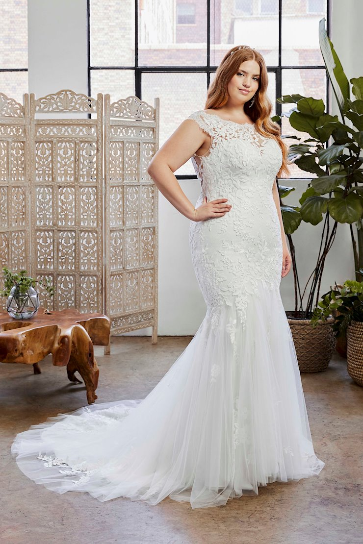 Curvy Collection Style NO. BL329C  Image