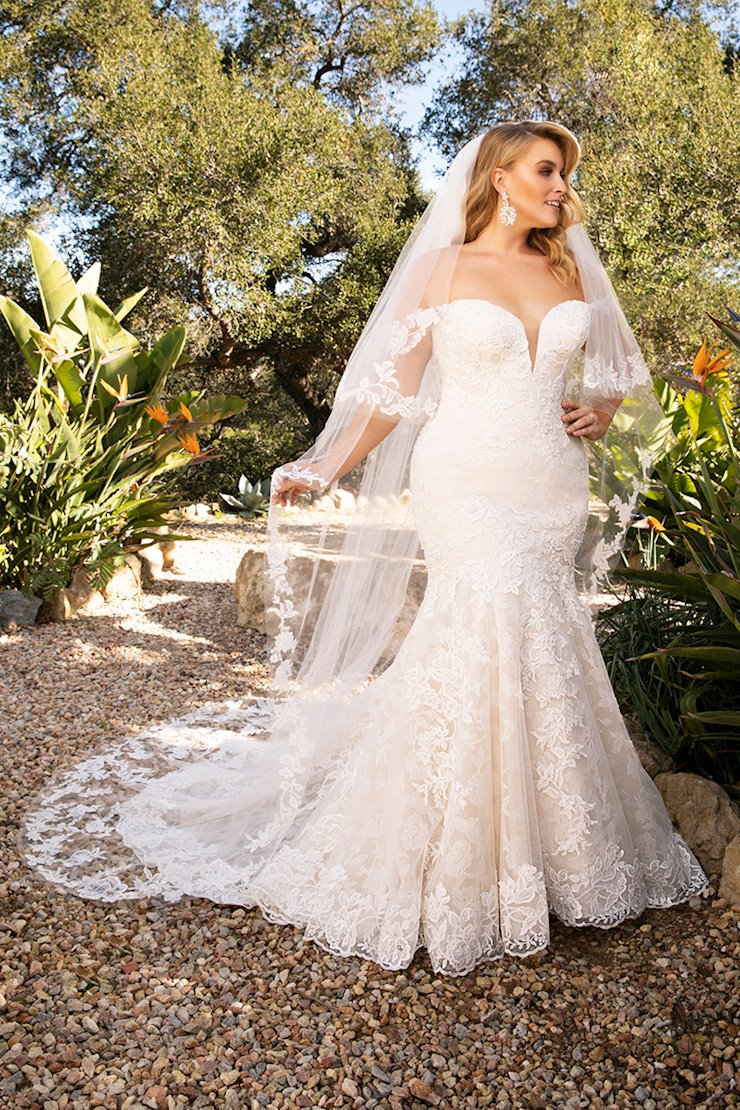 Casablanca Curvy Collection Style #2376C Image