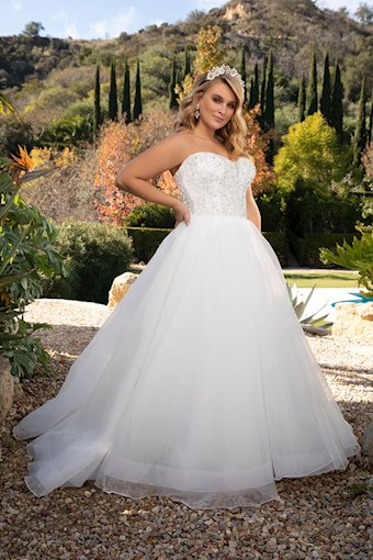 Curvy Collection Style #2379C