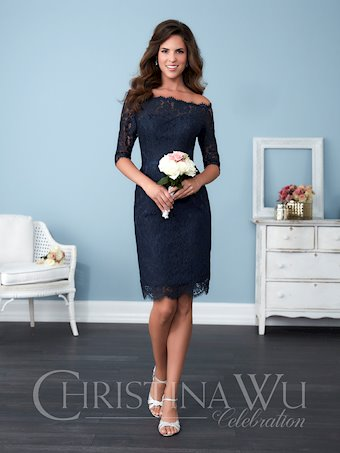 Christina Wu Celebration Style 22771
