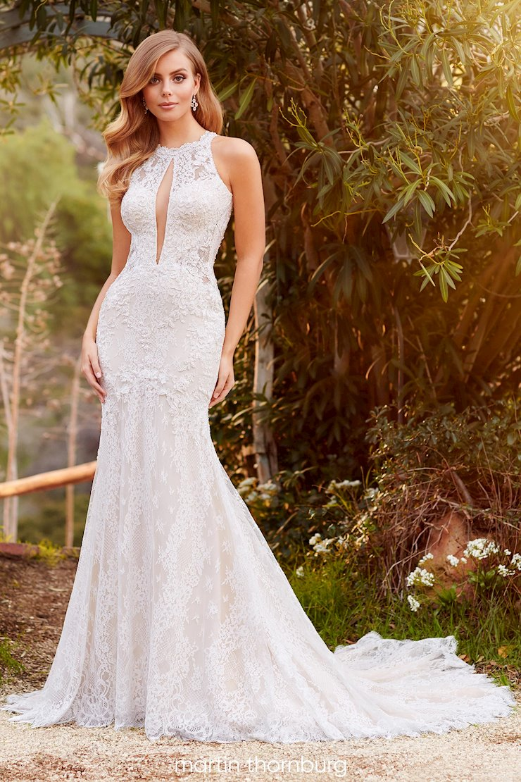 Lindley Vintage-inspired lace fit and flare gown with illusion high neckline