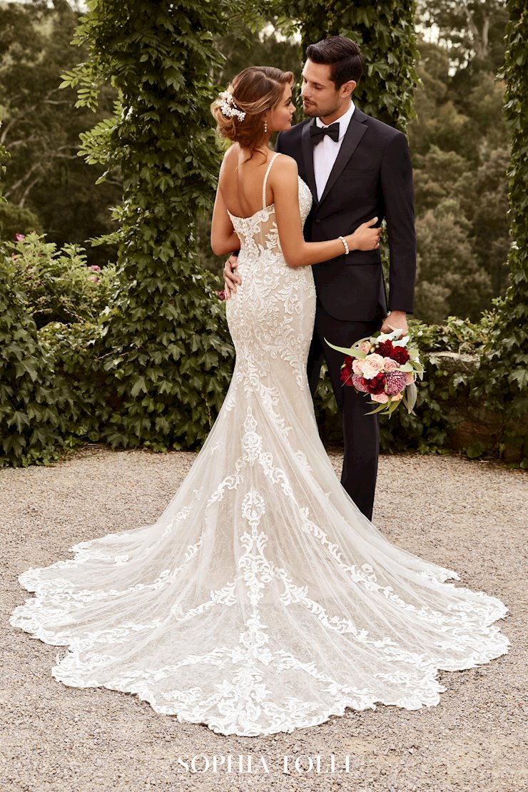 Sexy Lace Wedding Gown with Sheer Train Tamara
