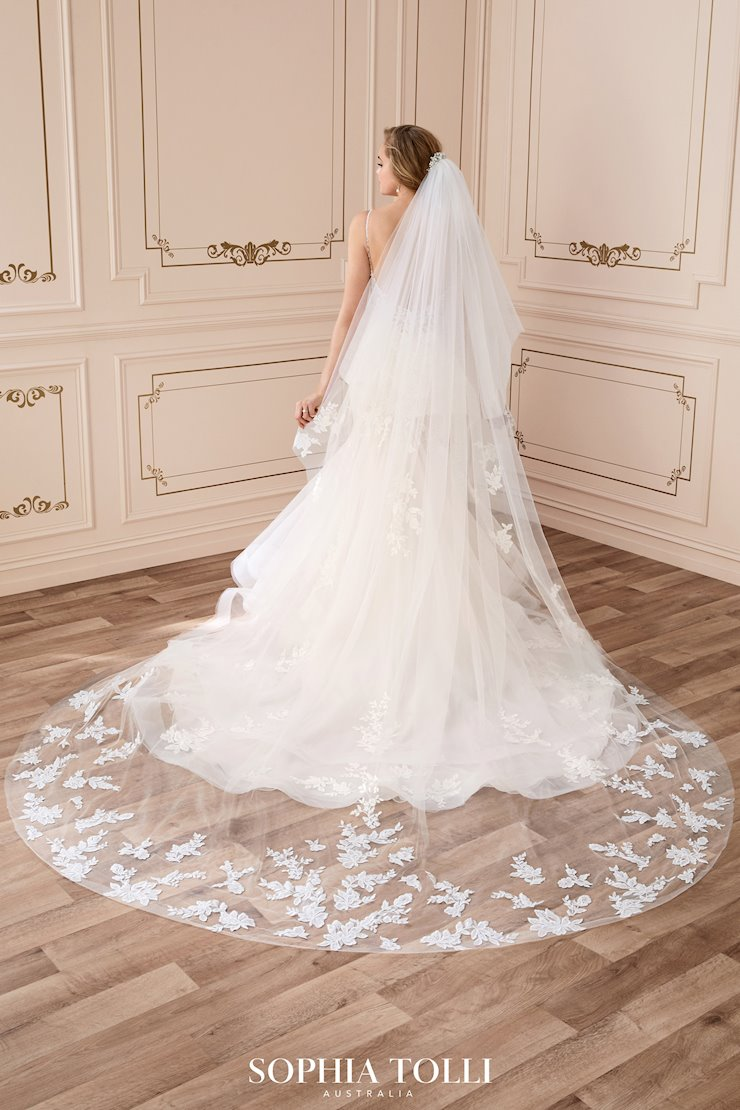 Breathtaking Two-Tier Circle Cut Veil