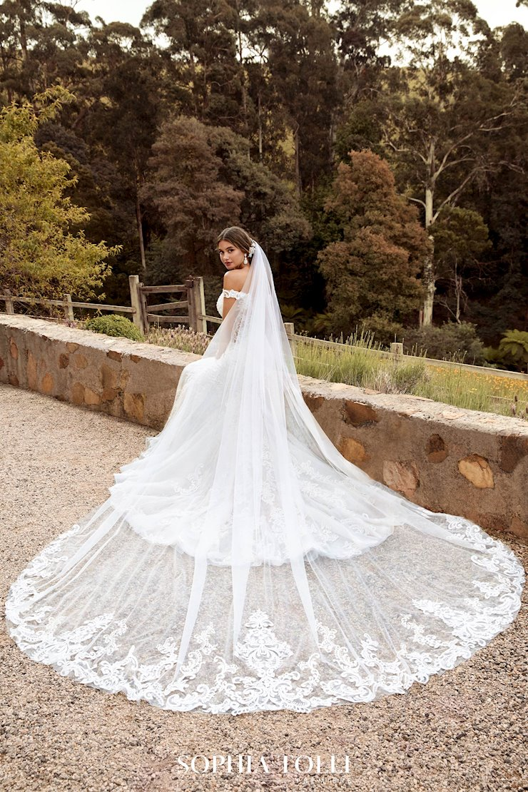 Breathtaking Veil with Lace Edge