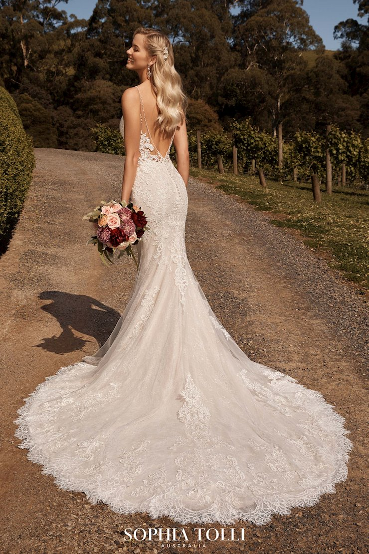 Glamorous Backless Fit and Flare Wedding Gown Mischa