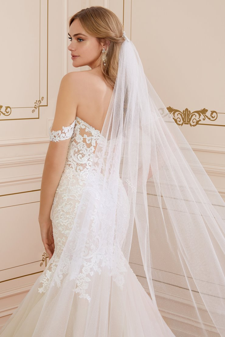 Sparkling Glitter Tulle Veil with Lace