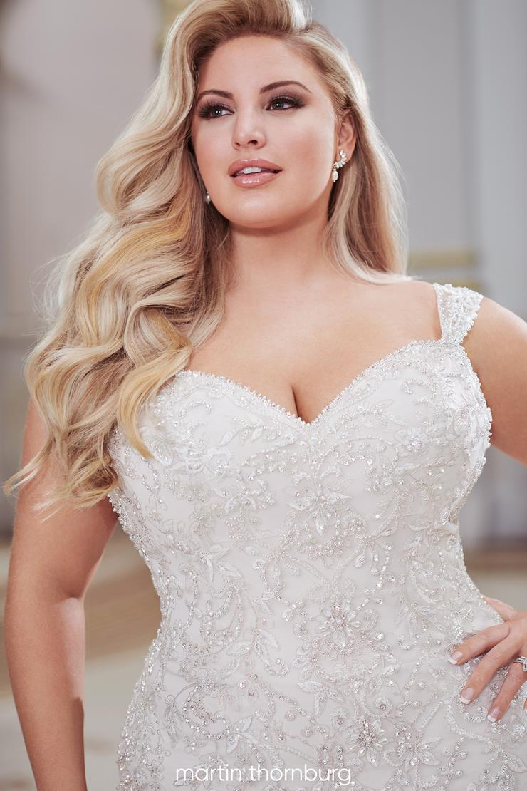 Visalia Exquisite plus size fit and flare gown with delicate beaded lace