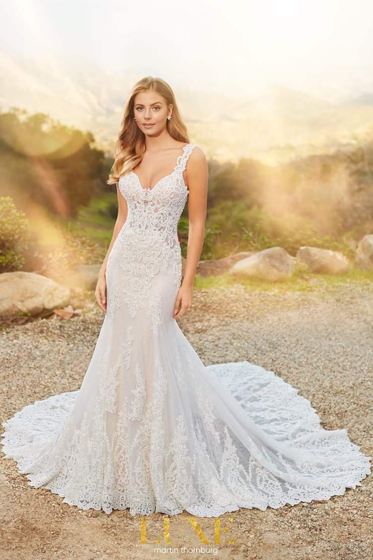 Serra Sexy lace and tulle mermaid gown with semi-sheer bodice