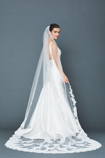 Accessories By Anne Barge Style #Azalea Veil