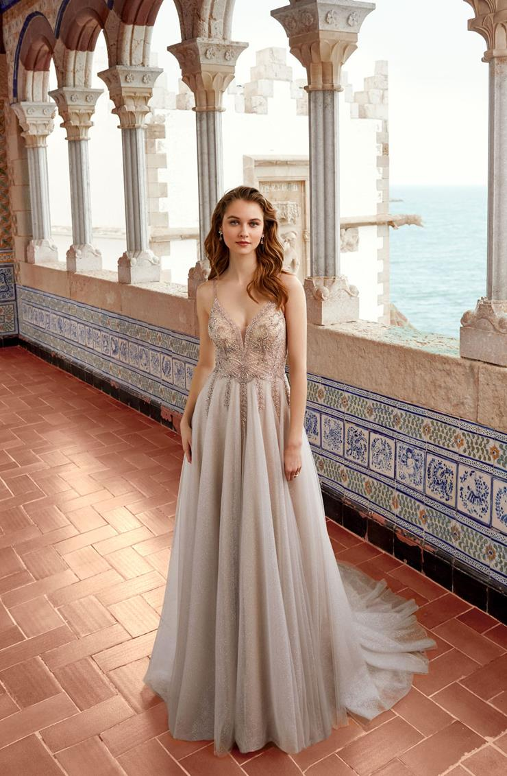 Allure Style #Sonali A-line Wedding Dress with Beaded Top and Shimmering Skirt  Image