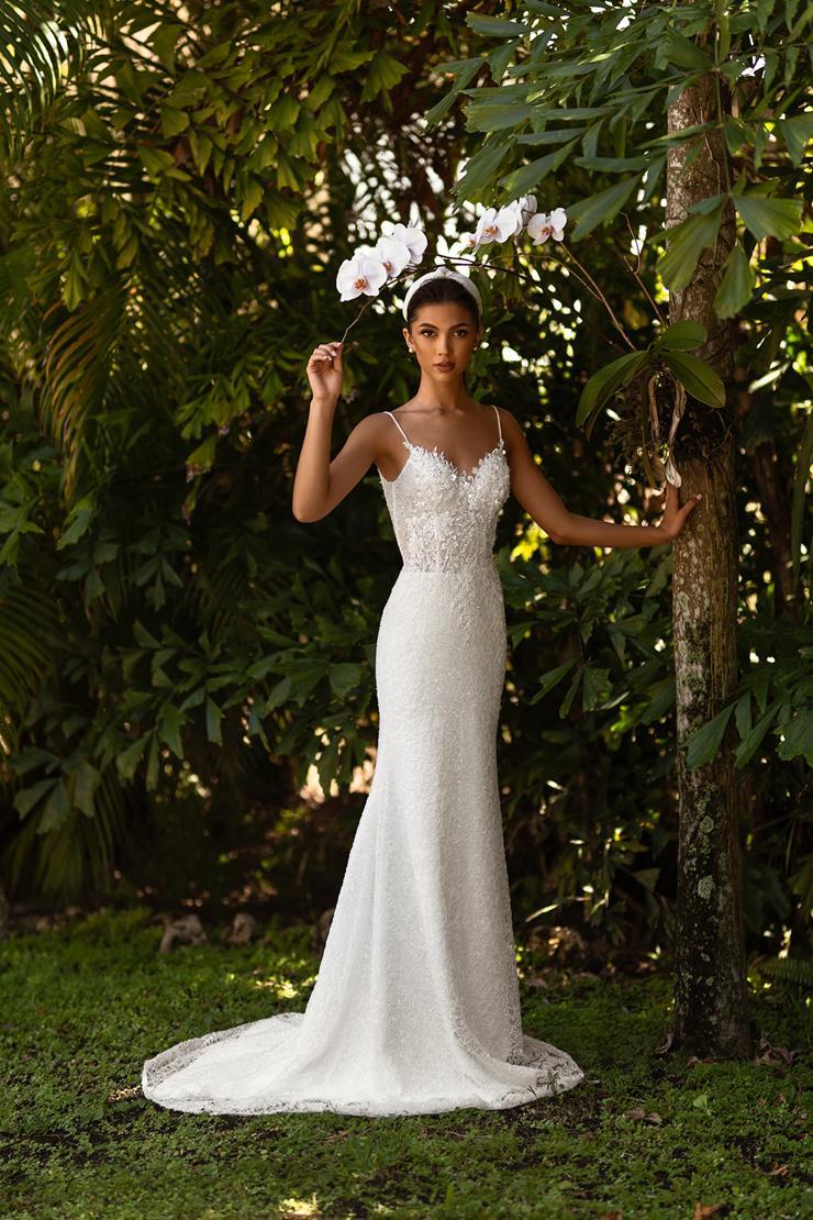 Aria Bride #Laura  Image