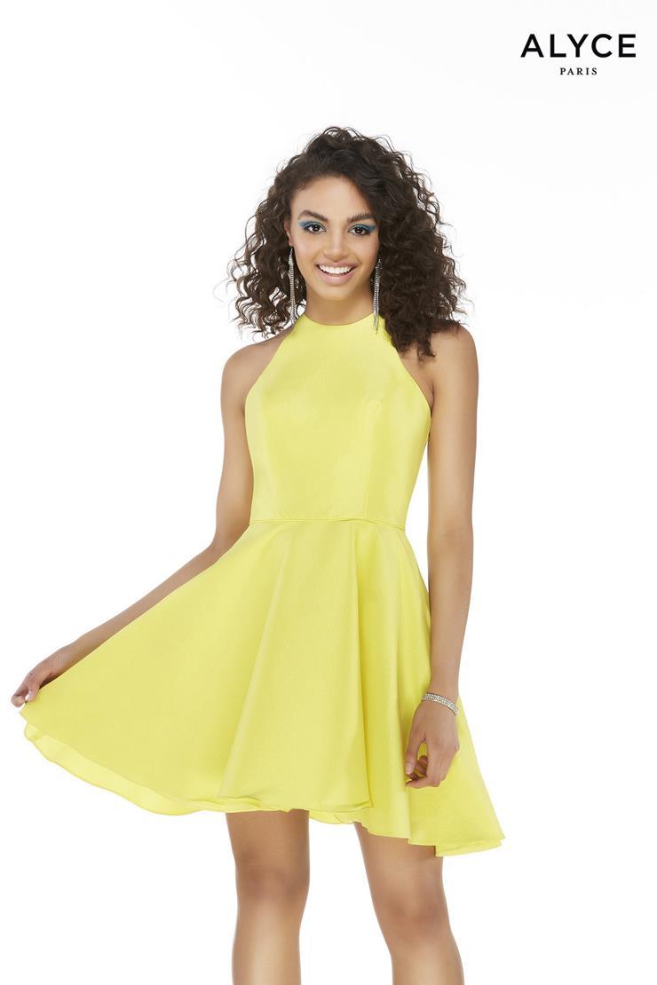 Alyce Paris Prom Dresses Style #3021
