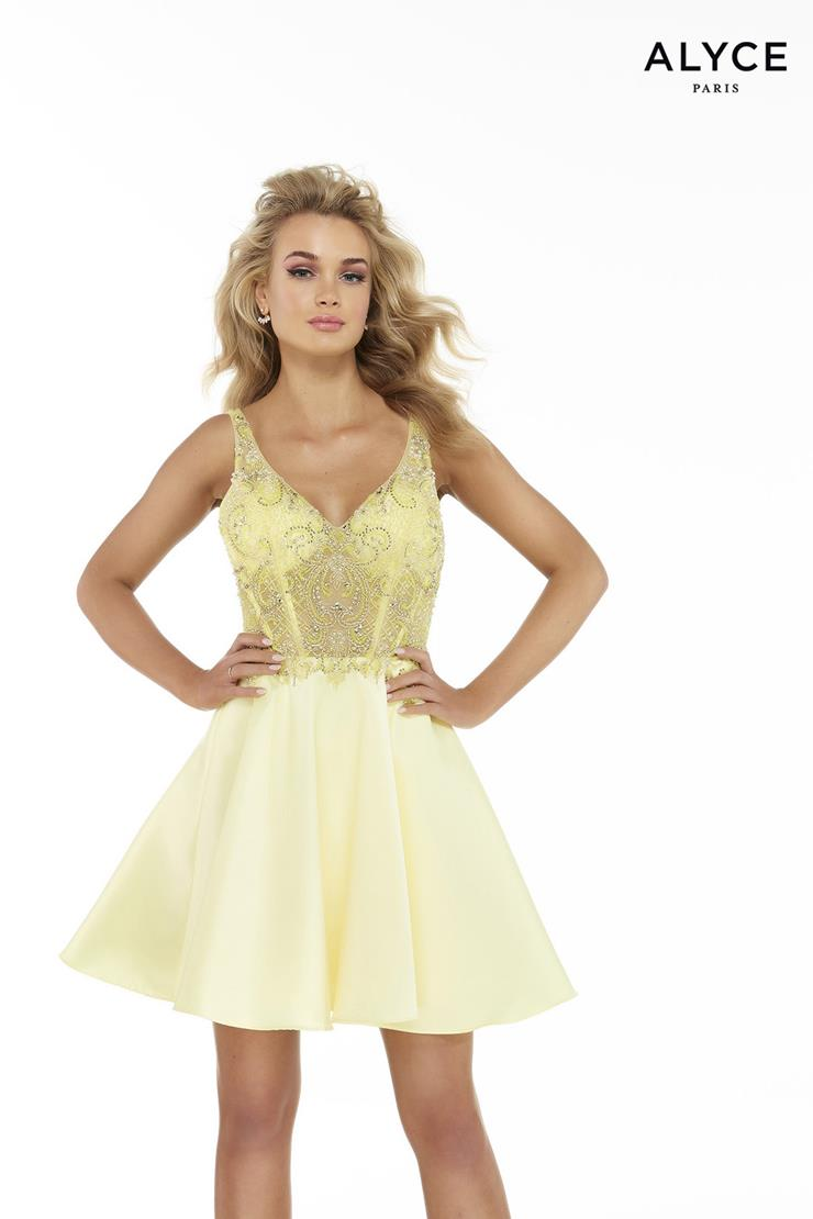 Alyce Paris Prom Dresses Style #3037
