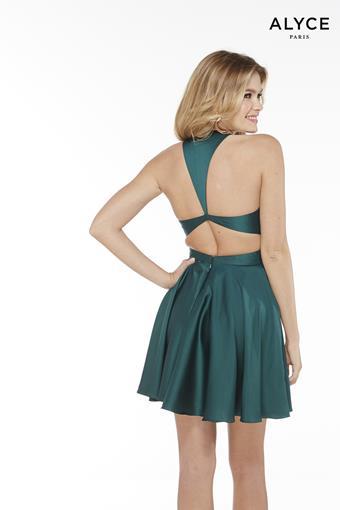 Alyce Paris Style #3051