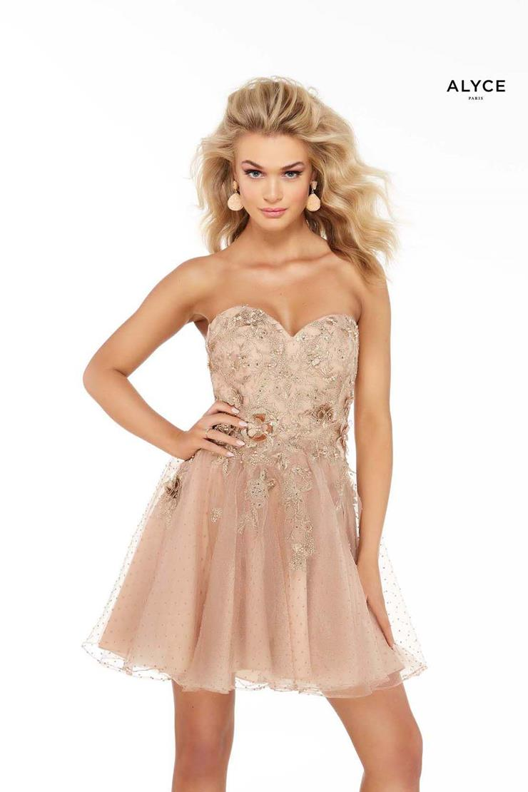 Alyce Paris Prom Dresses Style #3060