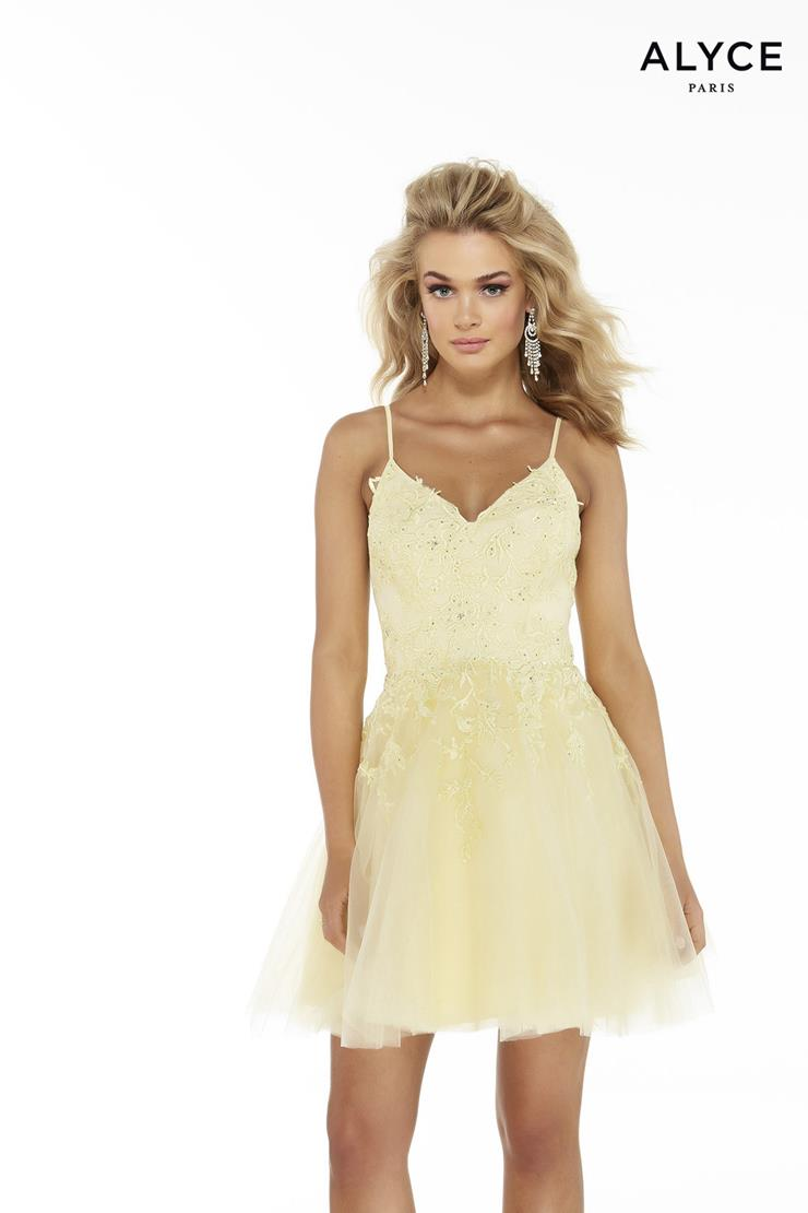 Alyce Paris Prom Dresses Style #3066