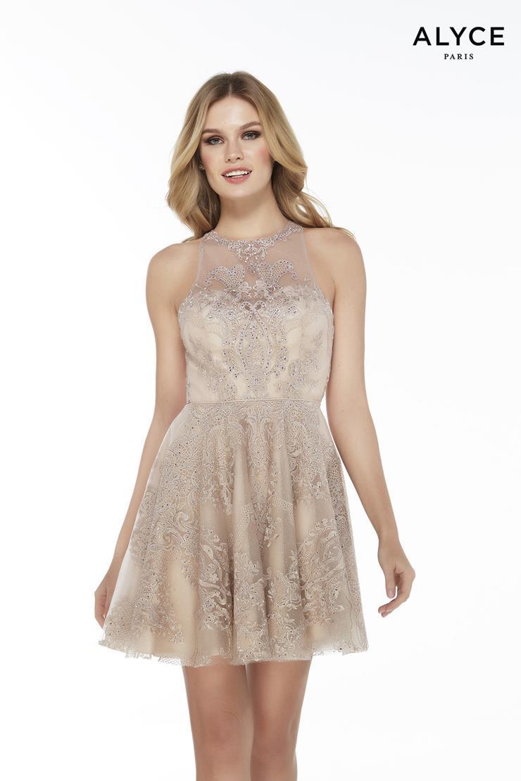 Alyce Paris Prom Dresses Style #3073