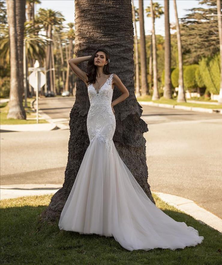 Pronovias Scott Image
