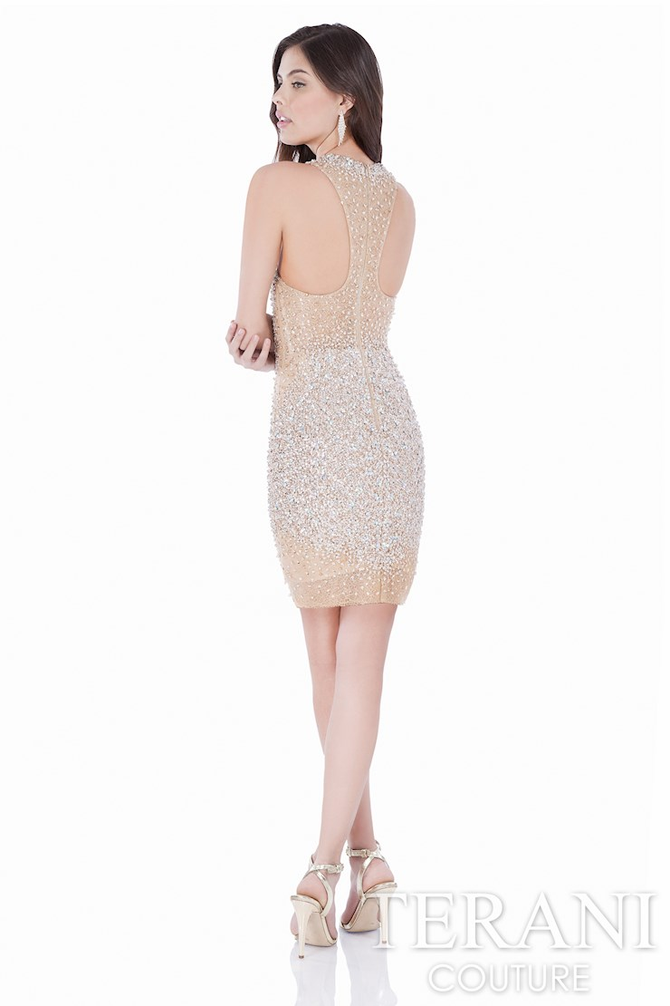 Terani Couture 1622H1134