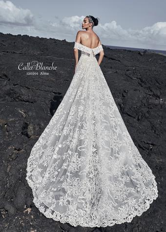 Calla Blanche Style #120201