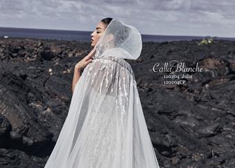 Calla Blanche Style #120204CP