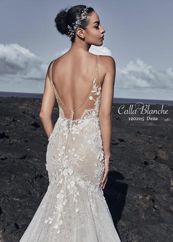 Calla Blanche Style #120205