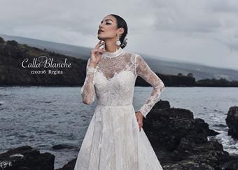Calla Blanche #120206