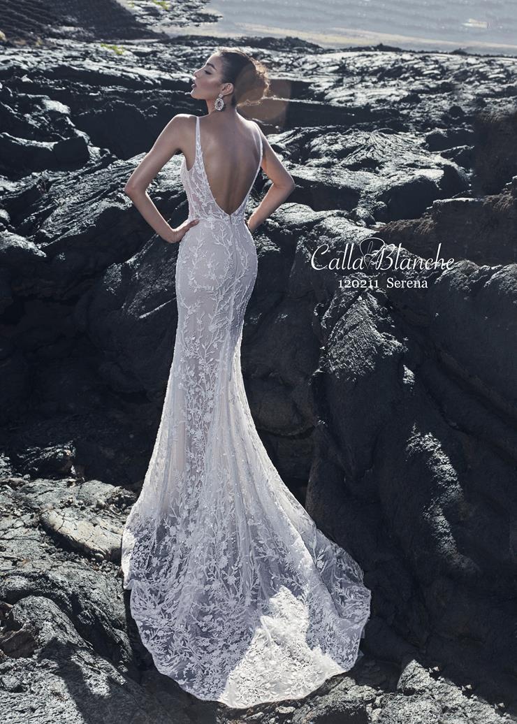 Calla Blanche Style #120211 Image