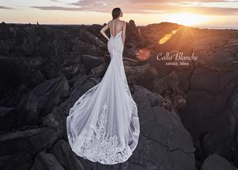 Calla Blanche Style# 120215