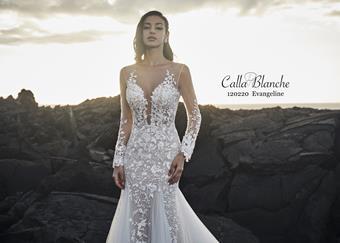 Calla Blanche Style #120220