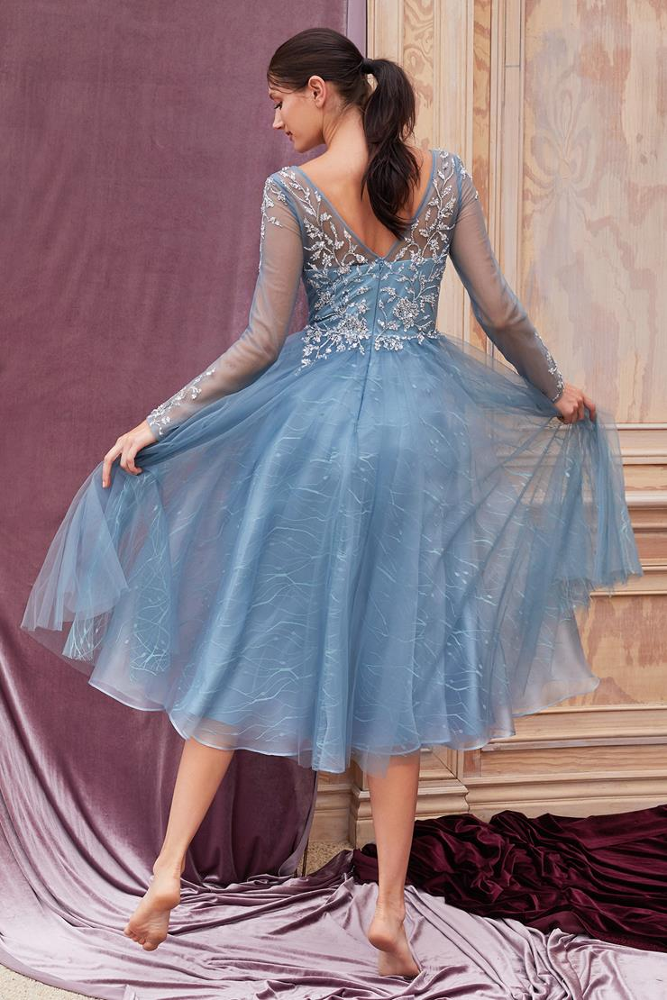 A&L Couture Style: A0552S  Image
