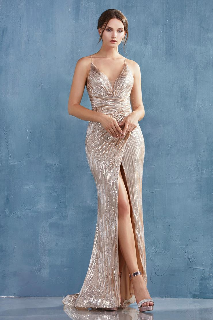 A&L Couture Style: A1008  Image