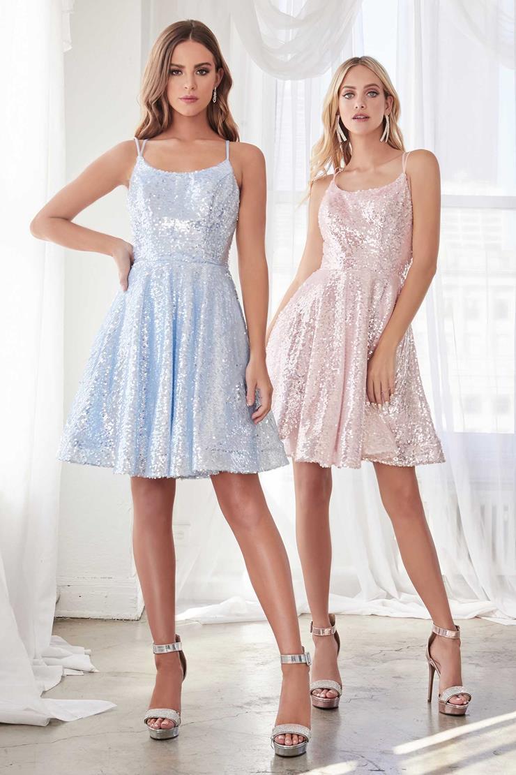 Cinderella Divine Style #AM398