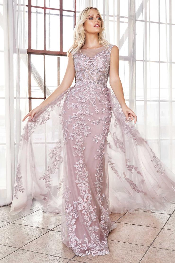 Cinderella Divine Style #C18