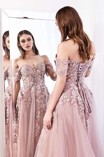 Cinderella Divine Style #C20