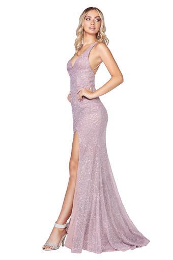 Cinderella Divine Style No. C29