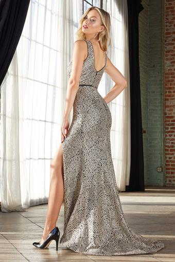 Cinderella Divine Style #C31