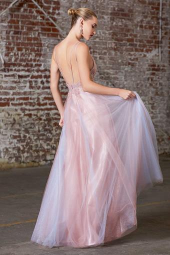 Cinderella Divine Style #CD0164