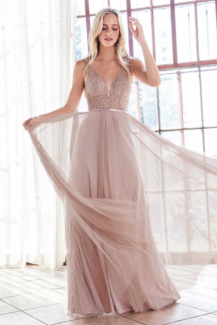 Cinderella Divine Style #CD192