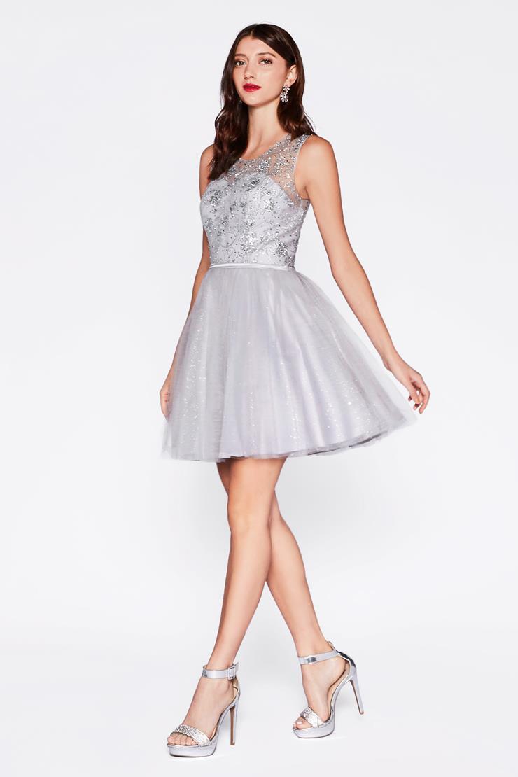 Cinderella Divine Style #CD20