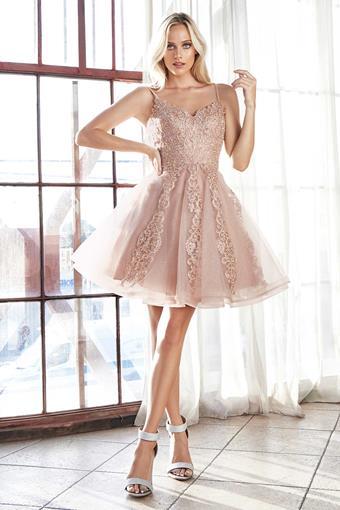 Cinderella Divine Style No. CD909