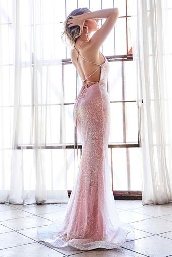 Cinderella Divine Style No. CW948