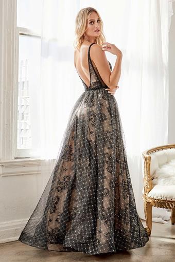 Cinderella Divine Style No. H9928