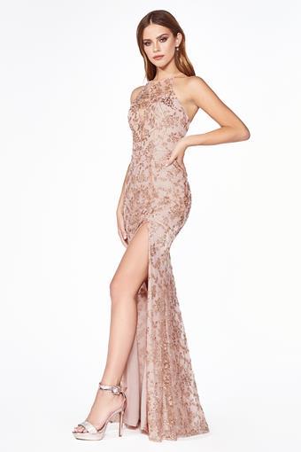 Cinderella Divine Style #J2150