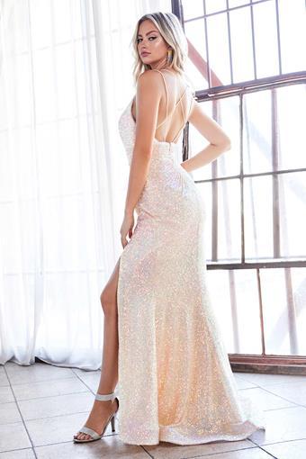 Cinderella Divine Style No. J9585